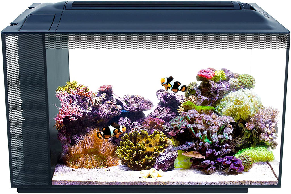 Fluval SEA Evo 52L Marine Aquarium