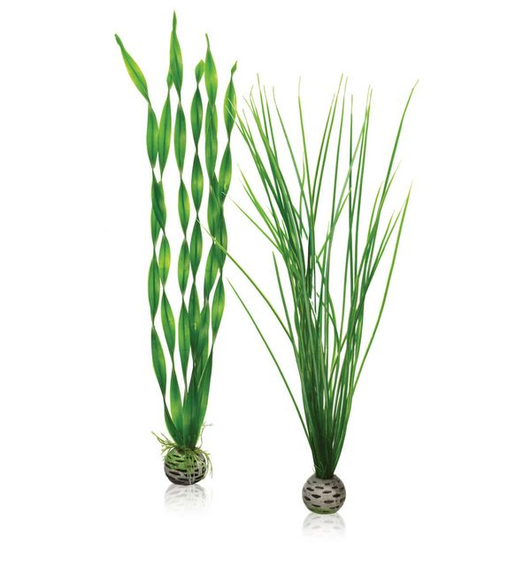 biOrb Aquarium Easy Plant Set Green Small, Medium, Large