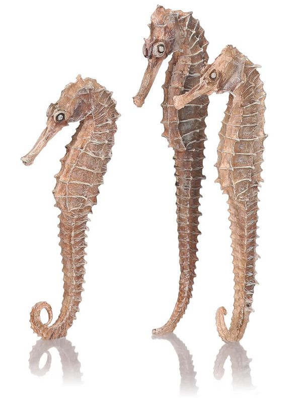 biOrb Seahorse 3 Pack Natural Aquarium Decoration