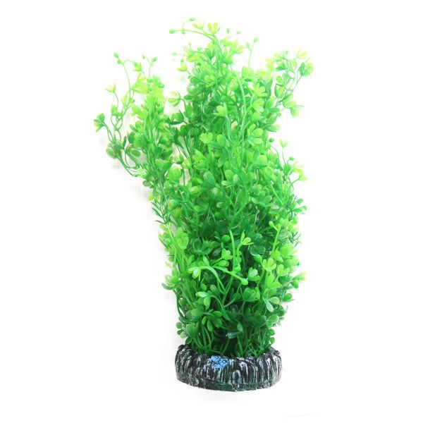 Betta Choice Aquarium 30cm Round Indian Fern