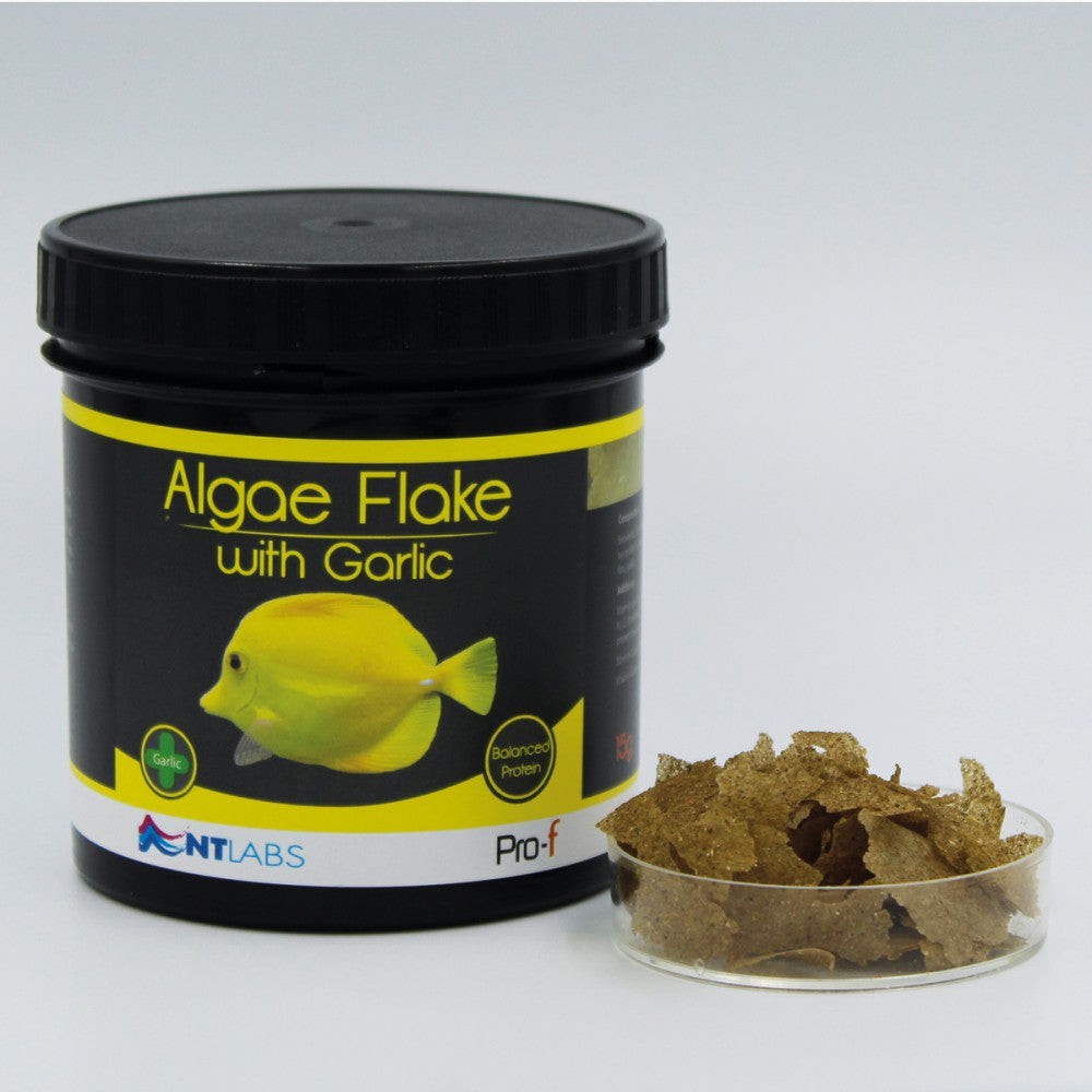 NT LABS Pro-F Algae Flake with Garlic 15g