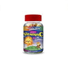 Holistic Way Childrens Vitamin C and Zinc Gummy 90pcs