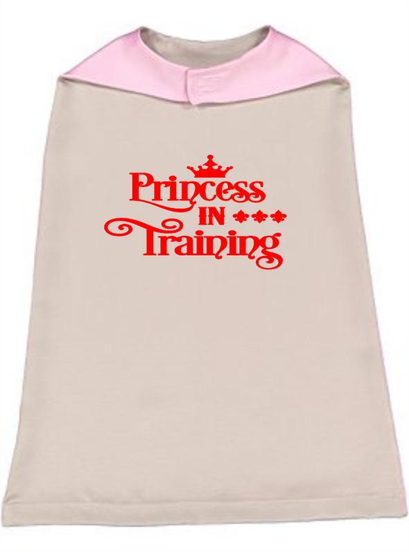 Princess In Training Silver Reversible Cape