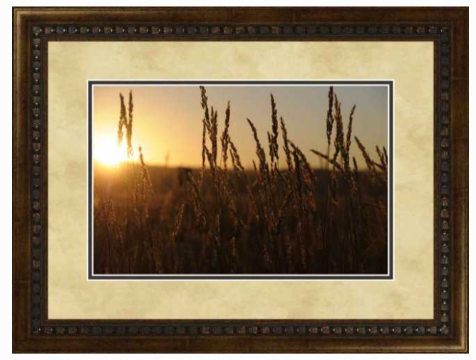 SUMMER WHEAT PAM LAKE by Midwest Art