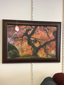 JAPANESE MAPLE IN AUTUMN by Midwest Art