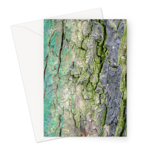 DAUB:TOOTING COMMON Greeting Card - Amy Adams Photography