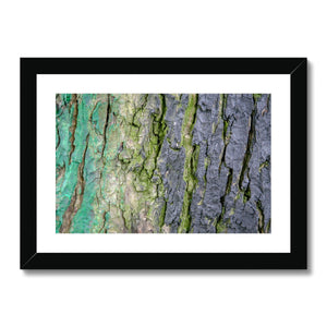 DAUB:TOOTING COMMON Framed & Mounted Print - Amy Adams Photography