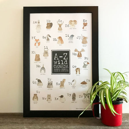Canadian Animals- Set of 8