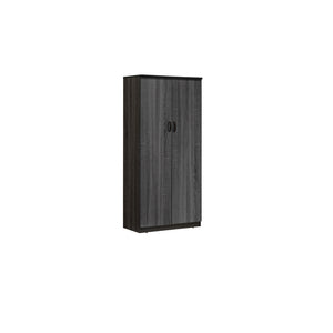MP3 BOOKSHELF WITH WOODEN DOOR