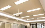 PANEL LIGHT:1'x4' Volt:100-277 Watt:40 CCT:4000K DIM Lumen:4000 CRI:>80 PF:>0.10 (Set of 2 Panels)