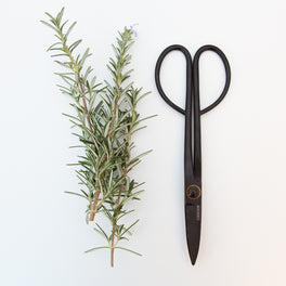 Artisan Trimming Shears