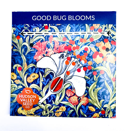 Good Bug Blooms by Hudson Valley Seed Company
