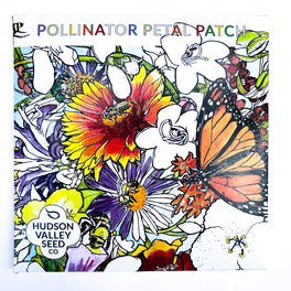 Pollinator Petal Patch from Hudson Valley Seed Company