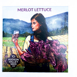 Merlot Lettuce from Hudson Valley Seed Company