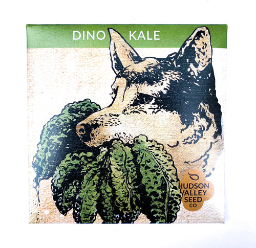 Dino Kale Seeds by Hudson Valley Seed Company