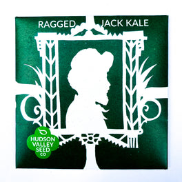 Ragged Jack Kale from Hudson Valley Seed Library