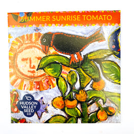 Summer Sunrise Tomato from Hudson Valley Seed Library