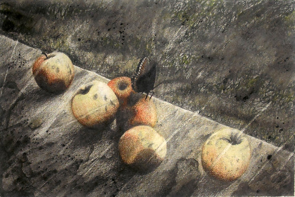 Butterfly Apples II