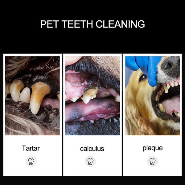 Pets Teeth Cleaning Tools Double Sided Dogs Cats Tartar Remover Dental Stones Stainless Steel Scraper Pet Supplies 30
