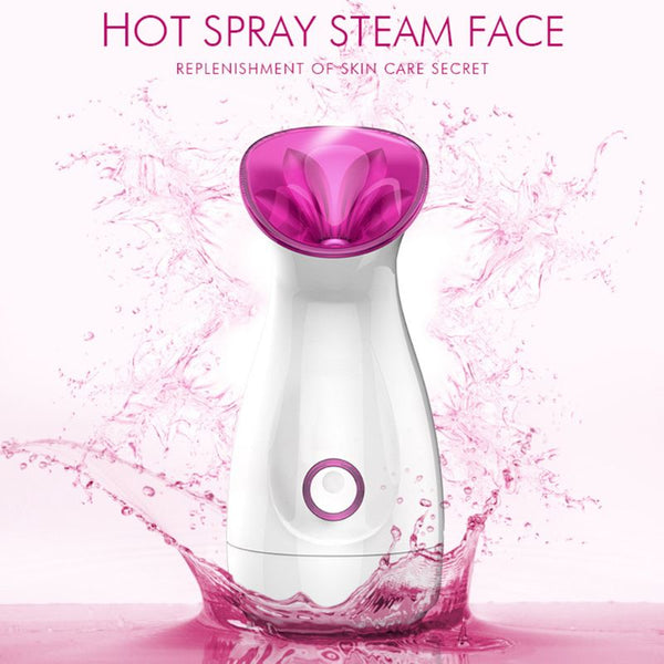 Hot Spray Steam Face Ion Beauty Instrument Nano Ionic Face Steamer For Face Beauty Salon Personal Sauna SPA Mini Face Sprayer