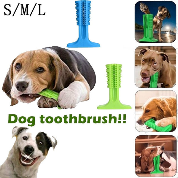Pets Toothbrush Dog Brushing Stick Dog Toys Brushing Stick Dog Brush Effective Toothbrush For Dogs Pets Oral Care Tooth Sticks