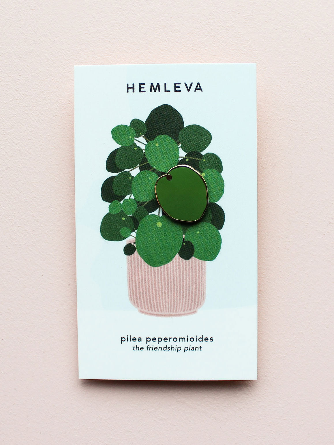 Pilea (The Friendship Plant) Pin