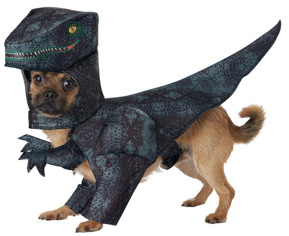 Pet Costume - Pupasaurus Rex Dog