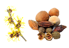 Witch Hazel & Triphala