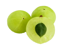 Indian Gooseberry (Amalaki)