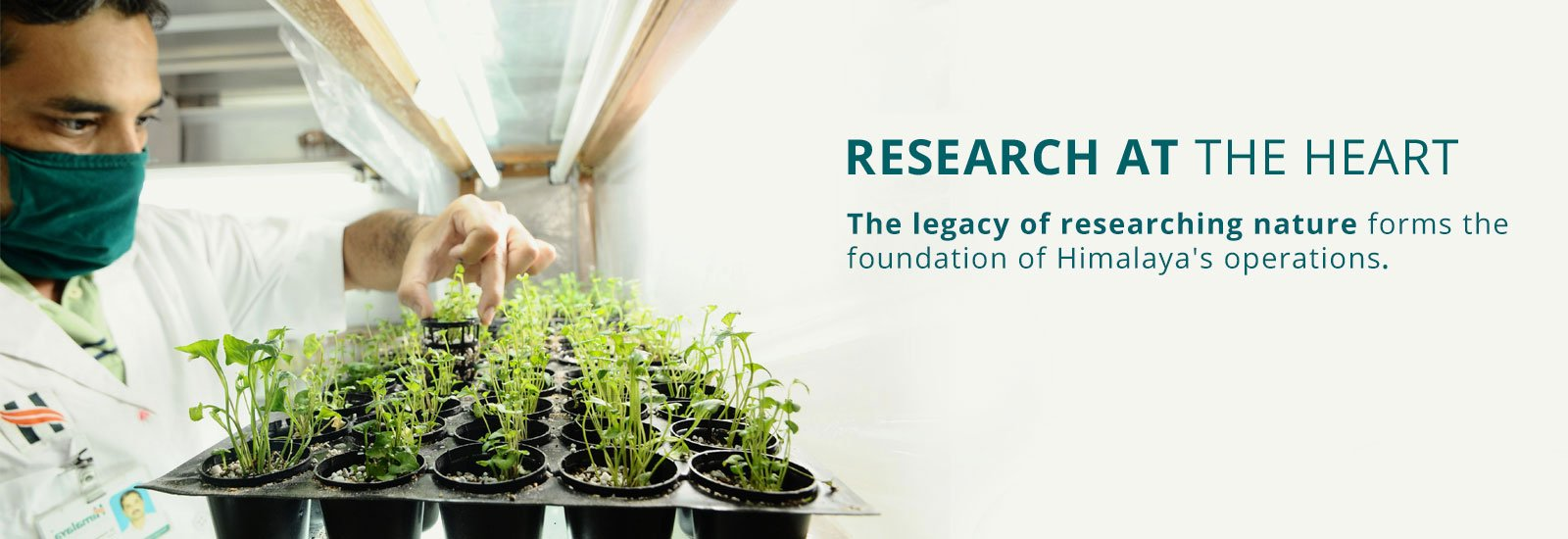 Research at the Heart