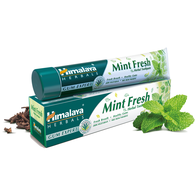 Mint Fresh Toothpaste 100ml