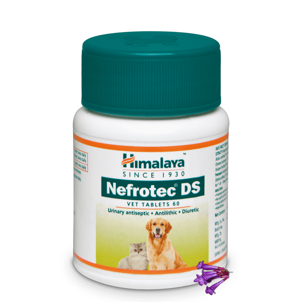 Himalaya Nefrotec DS Vet Tablet - Urinary Antiseptic