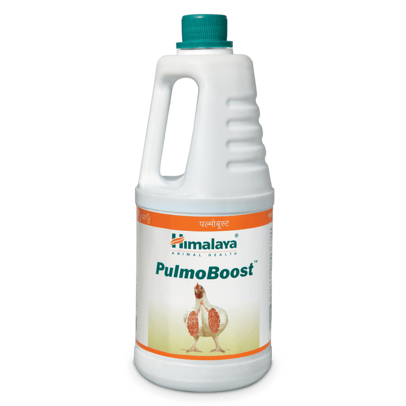 Himalaya PulmoBoost - Relief from Respiratory Diseases