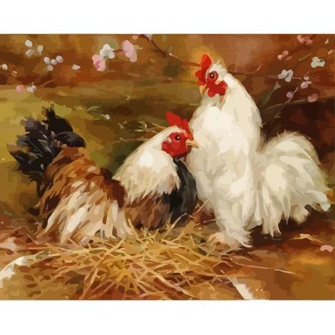 Hen Diy Paint By Numbers Kits PBN55557