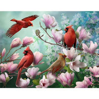 Colorful Bird Diy Paint By Numbers Kits VM97909