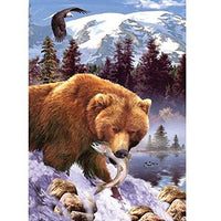 Bear Diy Paint By Numbers Kits PBN90235