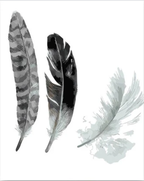 Feather Diy Paint By Numbers Kits PBN30150