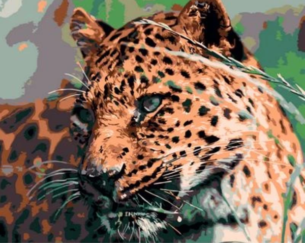 Animal Leopard Diy Paint By Numbers Kits ZXQ741