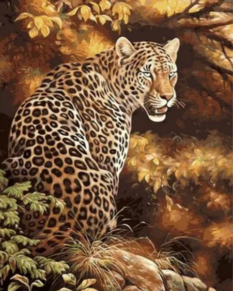 Animal Leopard Diy Paint By Numbers Kits ZXQ1614