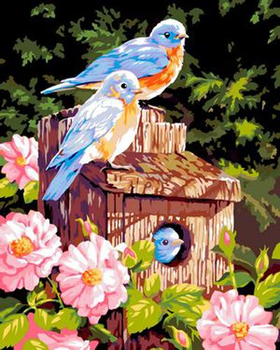 Flying Animal Bird Diy Paint By Numbers Kits ZXB360