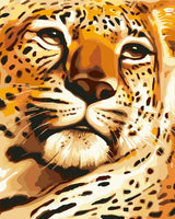 Animal Leopard Diy Paint By Numbers Kits ZXB581