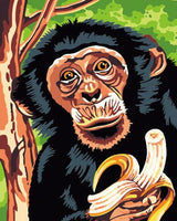 Animal Monkey Diy Paint By Numbers Kits ZXB711