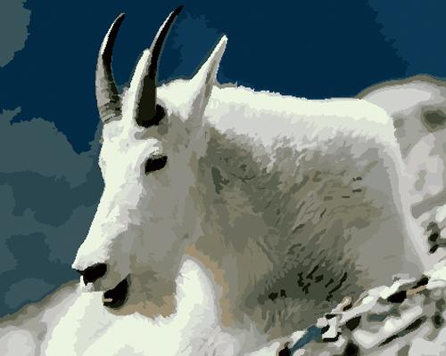 Goat Diy Paint By Numbers Kits ZXB776