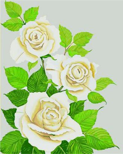 Plant Rose Diy Paint By Numbers Kits ZXB97
