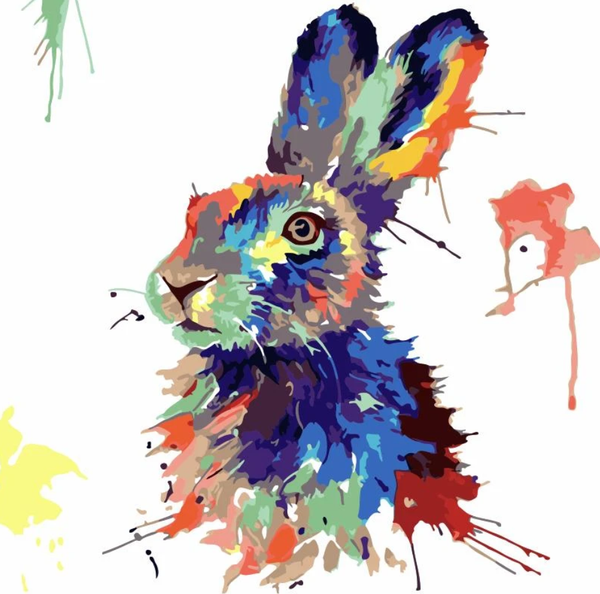 Rabbit Diy Paint By Numbers Kits WM-1644
