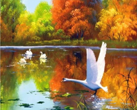 Swan Diy Paint By Numbers PBN90410