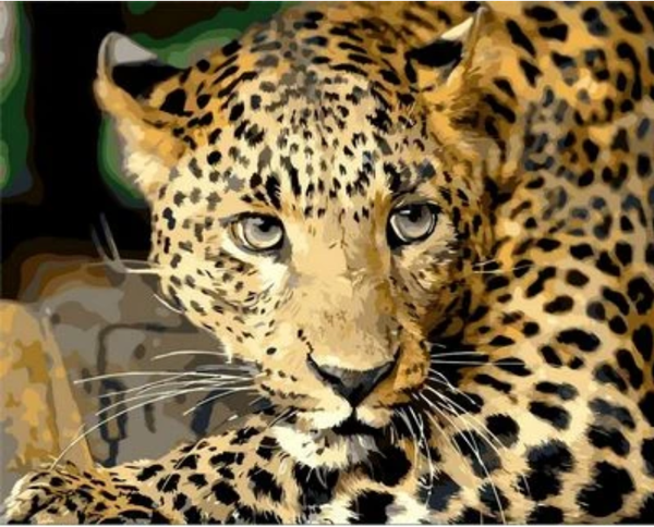 Animal Leopard Diy Paint By Numbers Kits ZXQ816