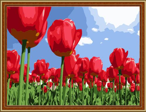 Tulips Diy Paint By Numbers Kits ZXE025