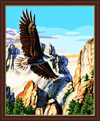 Eagle Diy Paint By Numbers Kits ZXE133