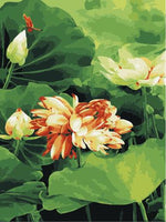 Lotus Diy Paint By Numbers Kits ZXE247